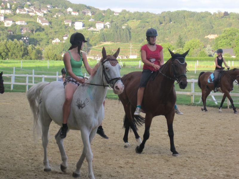 Pferd Reiten Ohne Sattel Beim Ohne Sattel Reiten